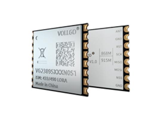 VG2389SXXXN0S1